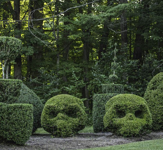 Bush_Sculptures.jpg
